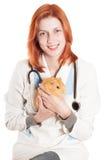 Vétérinaire de femme avec un cobaye dans des ses mains Photos libres de droits