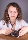 Vétérinaire de jeune femme Images libres de droits