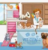 Vétérinaire Doctor avec des chats et des chiens à la clinique illustration stock