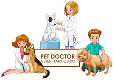 Vétérinaire Doctors avec des animaux familiers illustration stock