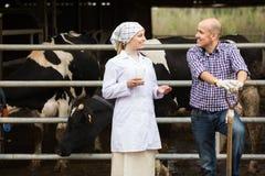 Vétérinaire et agriculteur dans l'étable Photos libres de droits