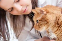 Vétérinaire et chat Image libre de droits