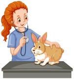 Vétérinaire examinant peu de lapin Photos libres de droits
