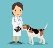Vétérinaire féminin Doctor illustration stock