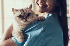 Vétérinaire professionnel de sourire Holding Cute Cat images stock