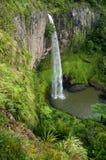 Véu nupcial C da cachoeira Fotos de Stock Royalty Free