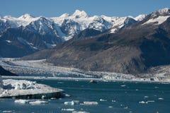 Vêlage de glacier de Colombie Photo libre de droits