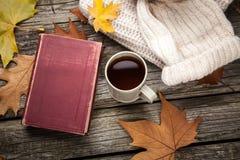 Vêtements chauds et une tasse de thé Image libre de droits