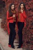 Vêtements d'automne de femmes réglés Deux jeunes beaux jumeaux de brune dedans images libres de droits