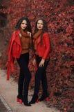 Vêtements d'automne de femmes réglés Deux jeunes beaux jumeaux de brune dedans image stock
