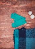 Vêtements d'hiver Belle mode légère de dames sur un fond en bois image libre de droits