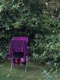 Vêtements séchant dans le jardin Image libre de droits