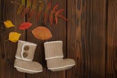 Vêtements tricotés sur le fond en bois de feuilles multicolores tombé par automne photos stock