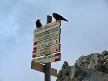 Vía ferratas en las dolomías - pájaros negros en un poste indicador turístico Imagen de archivo libre de regalías
