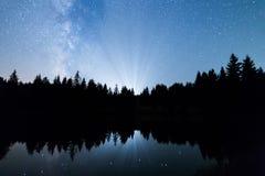 Vía láctea de la silueta de los árboles de pino del lago fotografía de archivo libre de regalías