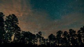 Vía láctea sobre el bosque de Mississippi almacen de metraje de vídeo