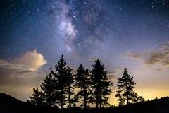 Vía láctea sobre las nubes y los árboles de pino imagen de archivo