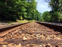 Vías curvadas del tren de ferrocarril en el bosque Imagen de archivo libre de regalías