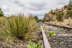 Vías del tren de ferrocarril Foto de archivo libre de regalías