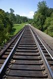 Vías del tren a través de Tennessee Forest Imagen de archivo