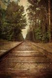 Vías retras del tren del estilo Fotografía de archivo