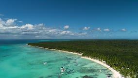 Vídeo aéreo da praia tropical bonita da ilha Saona, República Dominicana vídeos de arquivo