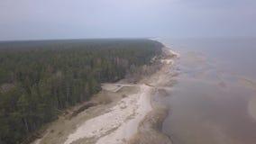 Vídeo aéreo de la opinión superior 4K UHD del abejón de la playa del mar Báltico de Roja Letonia metrajes