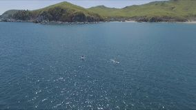 Vídeo aéreo del abejón del sorbo entre 2 hombres en aguas del Caribe tropicales almacen de video