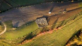Vídeo aéreo do zangão 4k dos carneiros no sheepfold nas montanhas video estoque