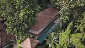 Vídeo da primavera, piscina no ar livre, spa resort no meio das selvas vídeos de arquivo