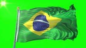 Vídeo dando laços sem emenda da rendição 3D da bandeira de Brasil Ondulação bonita do laço da tela de pano de matéria têxtil ilustração stock
