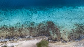Vídeo das caraíbas da lagoa da costa de mar da ilha de Bonaire Foto de Stock