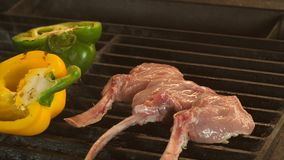 Vídeo de alta qualidade de bifes grelhados no movimento lento real, no processo de cozinhar o cordeiro ou a vitela no osso e nos  video estoque
