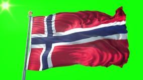 Vídeo de colocación inconsútil de la representación 3D de la bandera de Noruega El agitar hermoso del lazo de la tela del paño de ilustración del vector