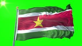 Vídeo de colocación inconsútil de la representación 3D de la bandera de Suriname El agitar hermoso del lazo de la tela del paño d stock de ilustración