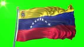 Vídeo de colocación inconsútil de la representación 3D de la bandera de Venezuela 2 El agitar hermoso del lazo de la tela del pañ stock de ilustración