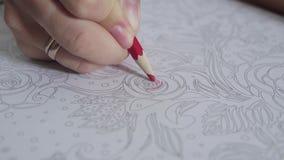 Vídeo de cor de uma mão da mulher que guarda um desenho de lápis e um livro para colorir da coloração Atividade para o relaxament video estoque