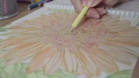 Vídeo de cor de uma mão da mulher que guarda um desenho de lápis e um livro para colorir da coloração Atividade para o relaxament vídeos de arquivo