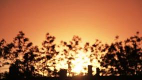Vídeo de FullHD no por do sol alaranjado sob a cidade vídeos de arquivo