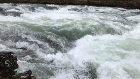 Vídeo de la cámara lenta del agua fluído almacen de metraje de vídeo