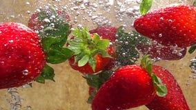 Vídeo de la cámara lenta de fresas en agua
