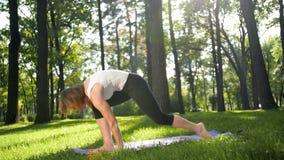 vídeo de la cámara lenta 4k de la yoga practicante de la mujer 40s en hierba en el parque Señora adulta que hace ejercicios de la metrajes