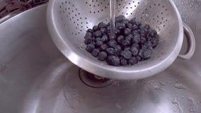 Vídeo de los arándanos que son lavados en un colador de acero inoxidable almacen de video