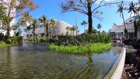 Vídeo de Miami Beach Lincoln Road Mall Time Lapse video estoque