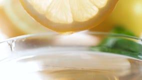 Vídeo de movimento lento do close up do mel que goteja lentamente da fatia do limão após ter mergulhado a no frasco video estoque