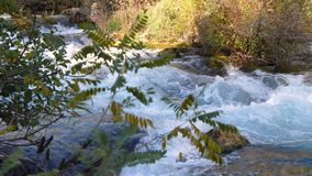 Vídeo de movimento lento do fluxo do rio do córrego vídeos de arquivo