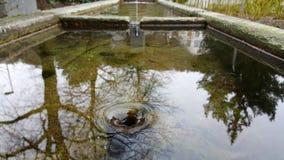 Vídeo de UHD 4k de las aguas que atraviesan el dren metrajes