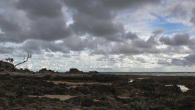 Vídeo del lapso de tiempo en la playa rocosa al mediodía almacen de video