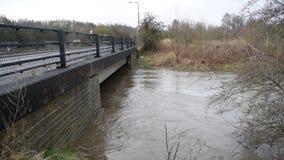 Vídeo del río Dearne en la inundación el 3 de abril de 2018 Wath sobre Dearne, Rother almacen de video