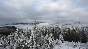 Vídeo do tempo HD do inverno de Oregon vídeos de arquivo